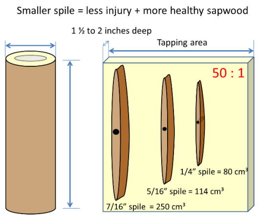 Volumn of stain column graphic