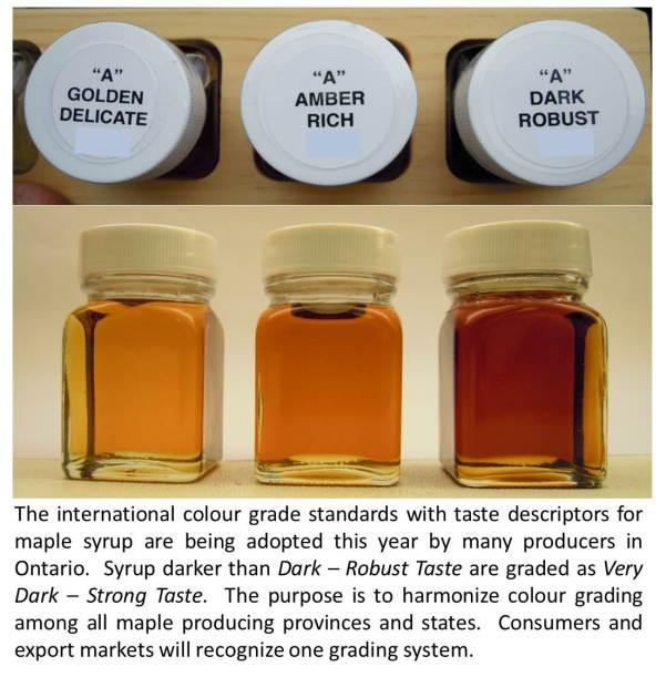maple-colour-grades-v2
