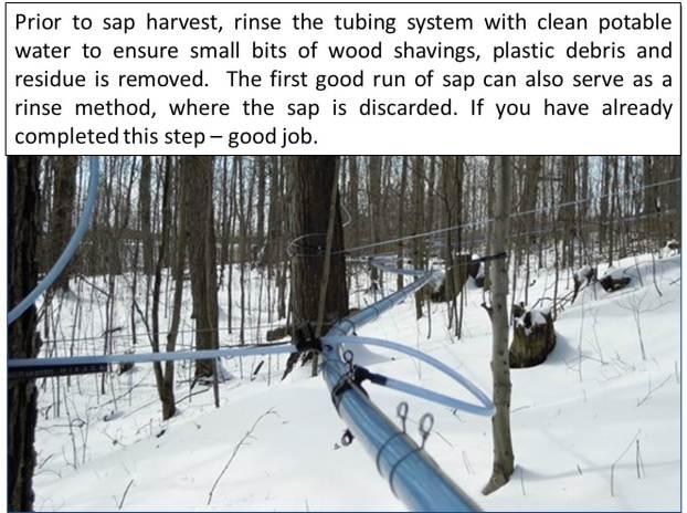 Rinse tubing Feb 28